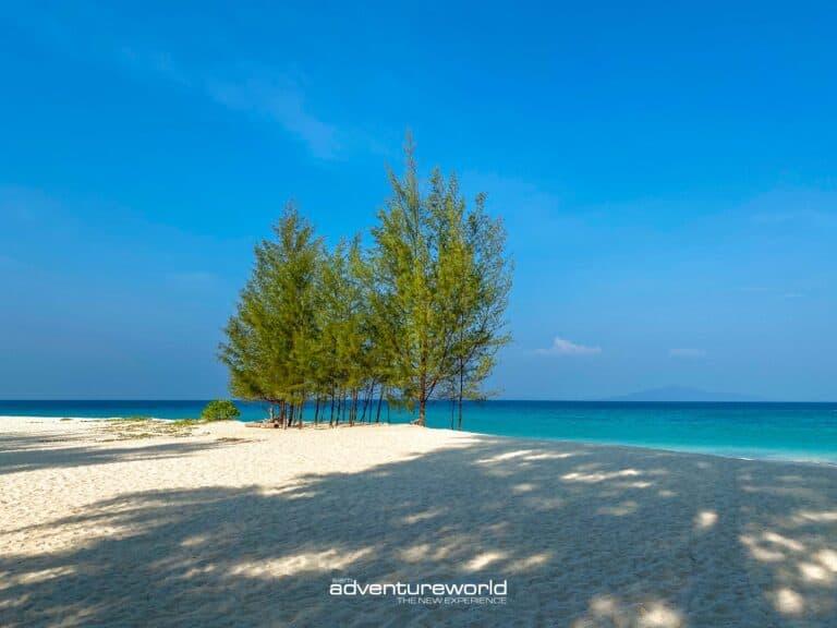 Phi Phi Islands Siam Adventure World-36