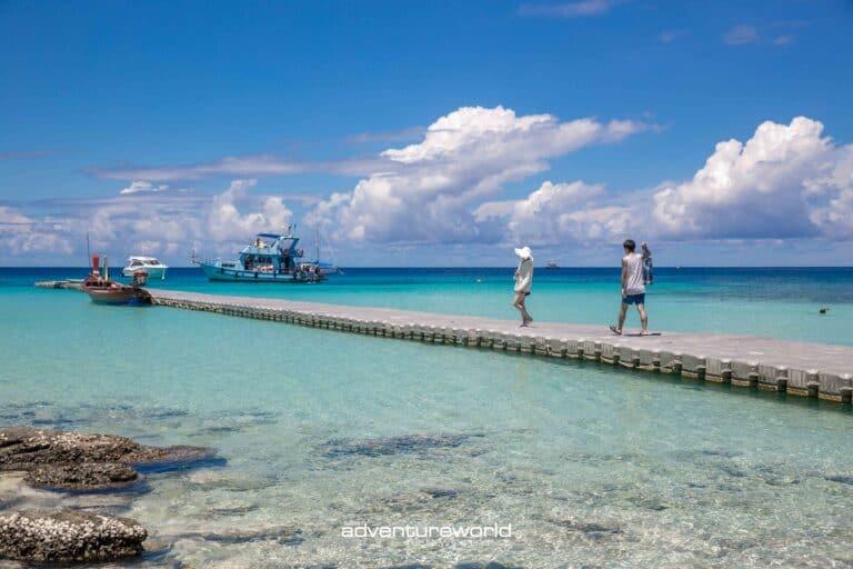 Siam Adventure World Racha Yai Noi Coral3-45