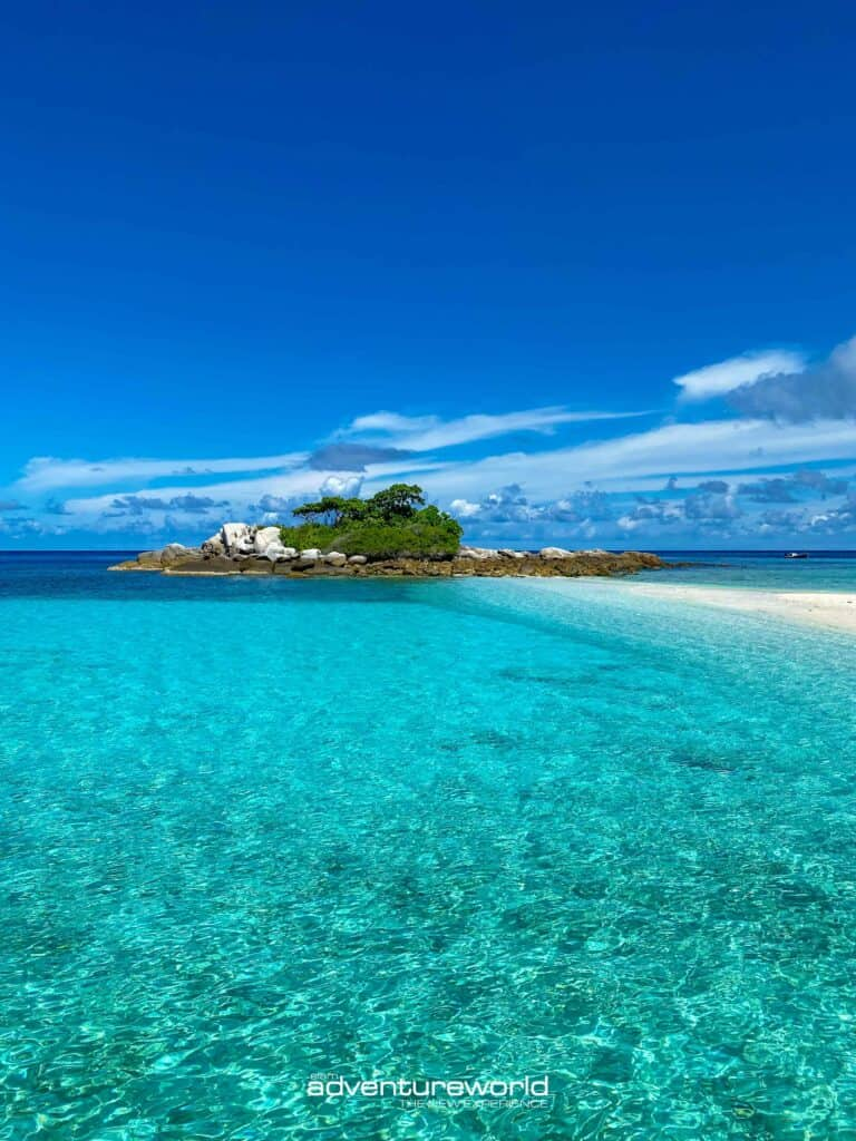 Siam Adventure World Racha Yai Noi Coral4-24