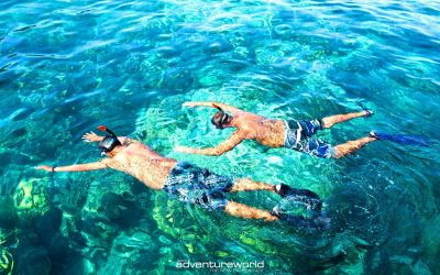 Snorkeling Surin